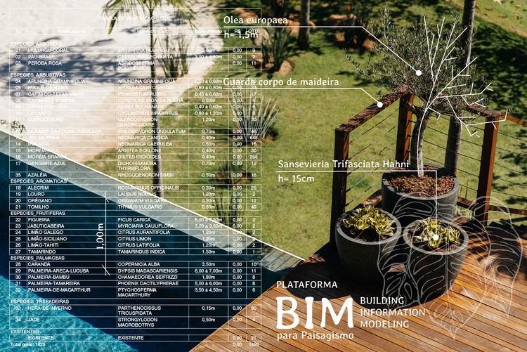 BIM para paisagismo: cenários, possibilidades e avanços, Cortesia de Alexandre Furcolin Paisagismo