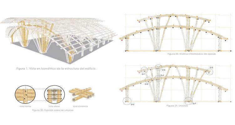 Aprende a diseñar una cubierta de bambú con cerchas verticales, © Lucila Aguilar