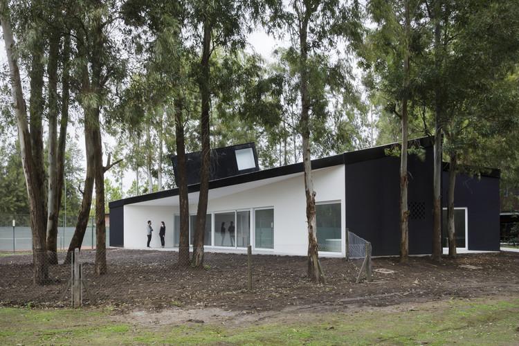 Casa entre árboles / Diego Arraigada Arquitecto, © Gustavo Frittegotto