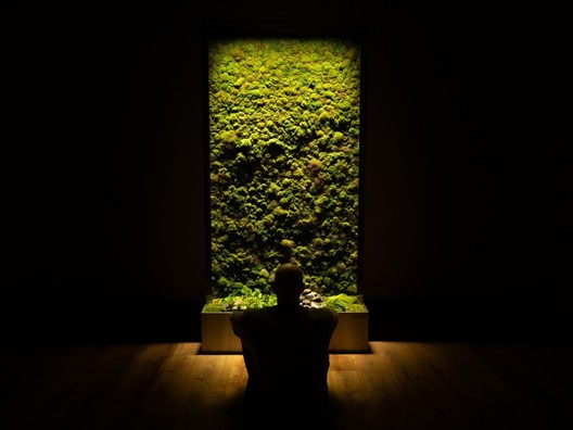 Why Incorporate Moss Walls into Architecture