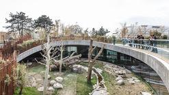 Centro de Observação de Pandas / BIG