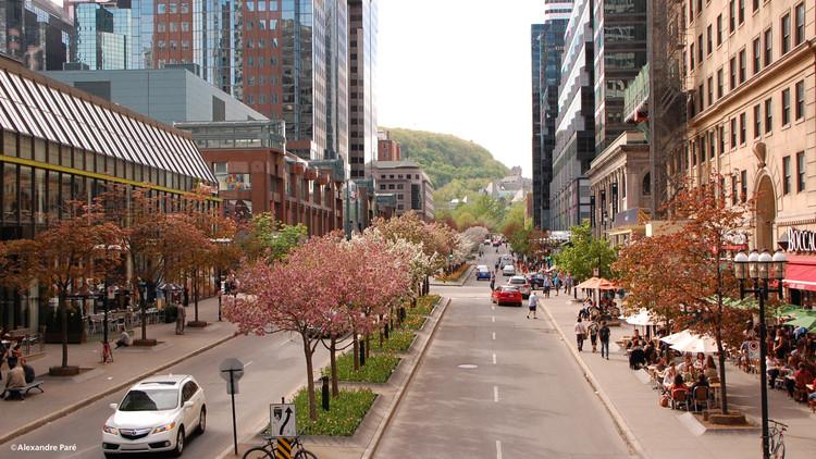 McGill College: An Avenue Reinvented International Multidisciplinary Urban Design Competition, McGill College Avenue