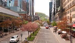 McGill College: An Avenue Reinvented International Multidisciplinary Urban Design Competition