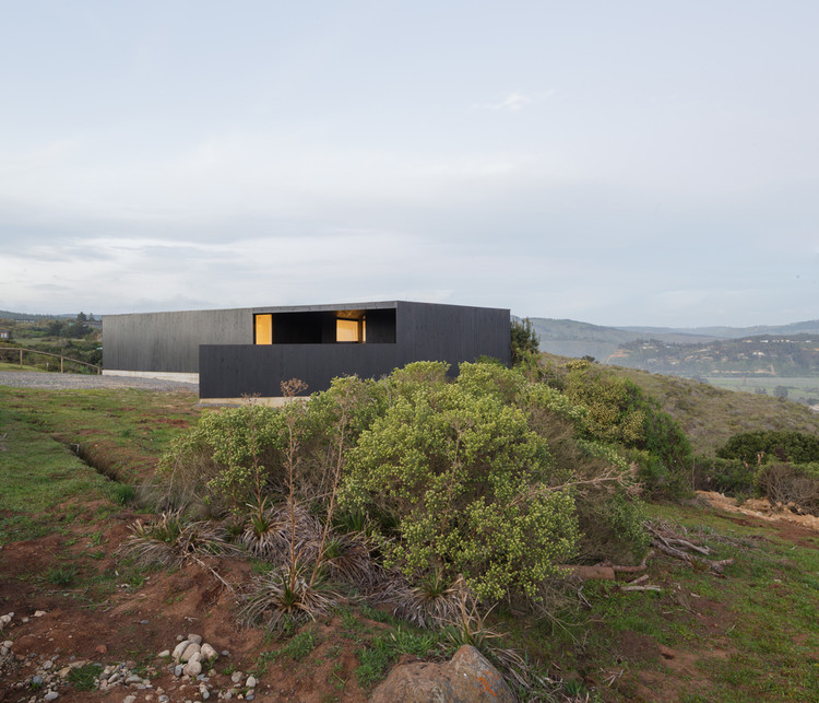 Casa del Peumo / WHALE!, © Felipe Fontecilla