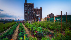 FoodCAMP: How Food Makes Better Cities and Vice Versa