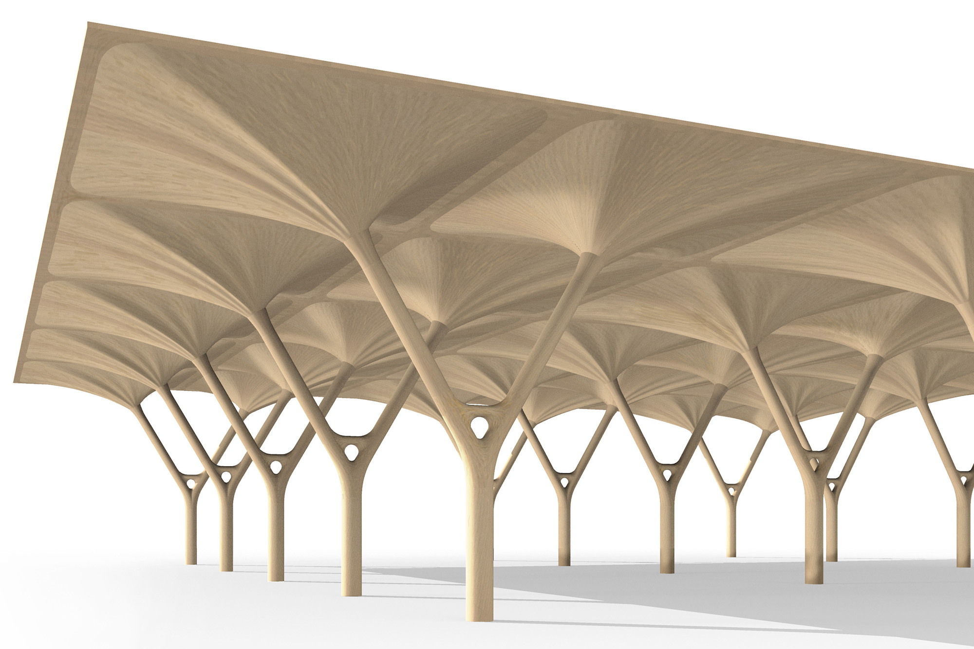 Structural and Light Pieces of Wood Based on Natural Intelligence of Trees