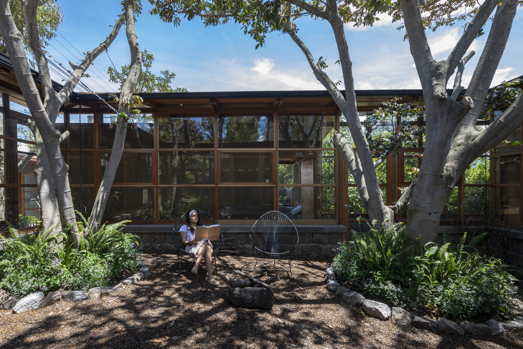 House Among Trees / El Sindicato Arquitectura