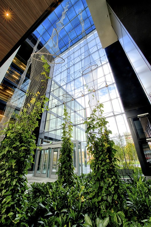 Creando jardines verticales y fachadas verdes con cables de acero, Cortesia de Jakob