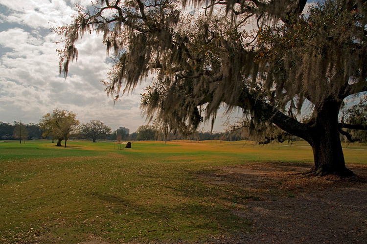 Once Racially Discriminated From His Own Architecture, Joseph Bartholomew is Overlooked No More, Audubon Park golf course, where Joseph Bartholomew first caddied. Image via Shutterstock