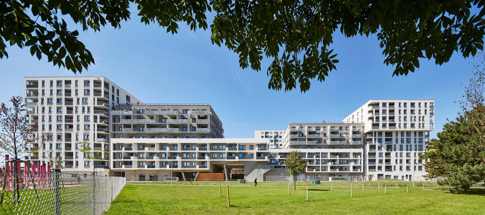 Querbeet Social Housing / Synn Architekten