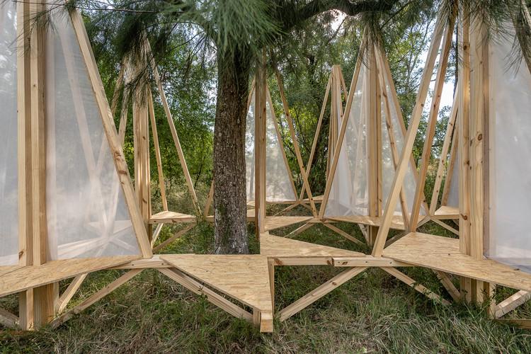 Estructuras de madera construidas por estudiantes en Hello Wood Argentina 2020, ECO-SISTEMA (PROYECTO SATÉLITE). Image © Pedro Scarpaci