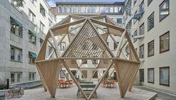 Timber Dome / Tham & Videgård