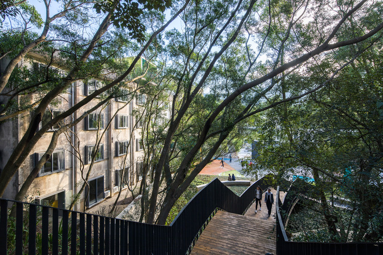 Forest promenade starting from home plaza. Image © Chao Zhang