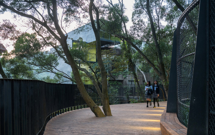 Forest promenade connecting the living section and the teaching section. Image © Chao Zhang