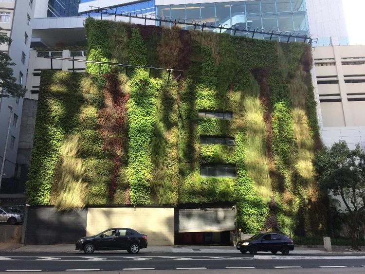 Fachada verde em uma edificação na cidade de São Paulo - SP. Imagem de Lucas Rosse Caldas