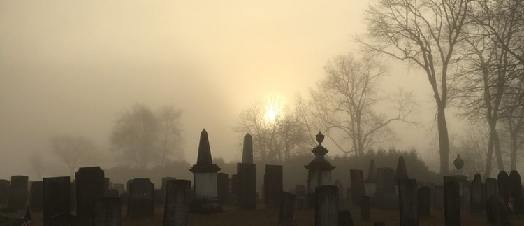 In Praise of Cemeteries, © Michael J. Crosbie