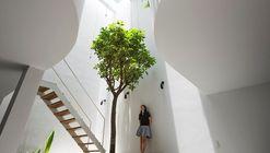 Cómo transformar un interior contaminado en un hogar saludable