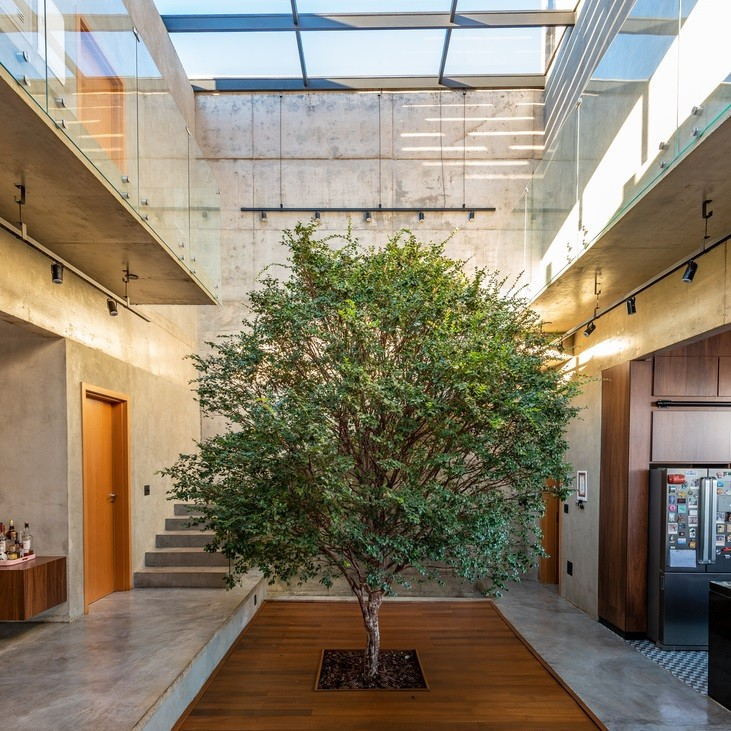 Nature Within: 17 Projects With Indoor Trees, © Favaro Jr.