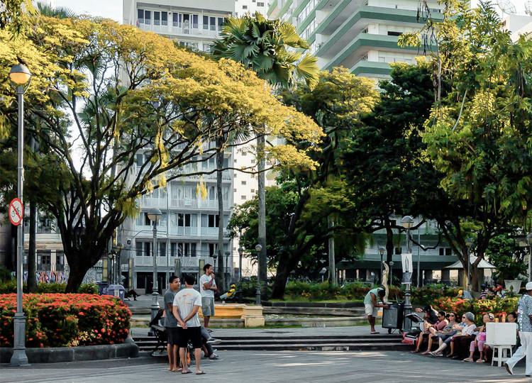 50 Espécies da Mata Atlântica que podem ser plantadas na calçada, Imagem do Manual Técnico de Arborização Urbana de Salvador