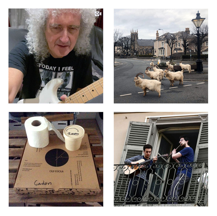 New Call for Submissions for Monu #33 - Pandemic Urbanism, Brian May's micro concerts, goats on the streets, pizza delivery with toilet paper, Two men jam on a balcony. Above left: Brian May's micro concerts on his Instagram page. Above right: Great Orme Kashmiri goats on the streets of Llandudno, Wales. Below left: Pizza delivery with toilet paper, Rotterdam, Netherlands. Below right: Two men jam out on the guitar and flute on a balcony in Turin, Italy