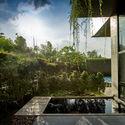 01 approach to split level house (5) - Tresno House / RAW Architecture: Biệt thự hiện đại cây xanh và hồ bơi