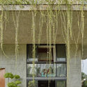 01 approach to split level house (6) - Tresno House / RAW Architecture: Biệt thự hiện đại cây xanh và hồ bơi