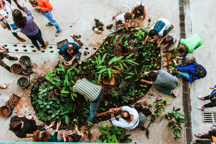 Enfrentando inundações urbanas: 7 soluções para cidades-esponja, Jardim de Chuva do Centro Cultural Fundição Progresso – Rio de Janeiro. Imagem © Luiz Franco