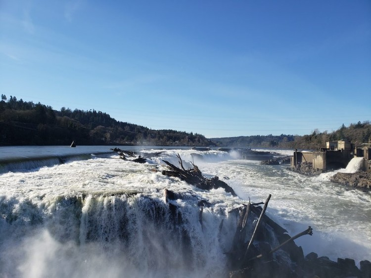 MASS Design Group to Lead Willamette Falls Tribal Engagement Process, Courtesy of Willamette Falls Trust