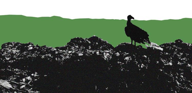 Como o Brasil pós-COVID-19 tratará os resíduos sólidos urbanos?, Imagem © Instituto Pólis