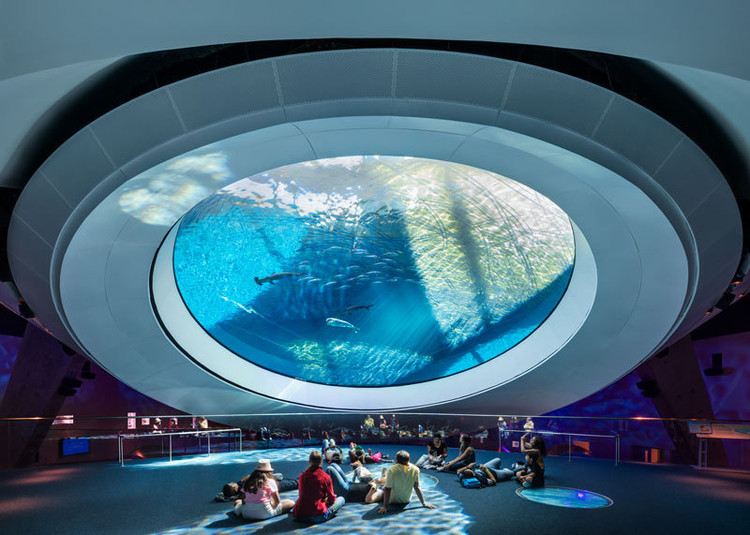 Building Wonder: Global Aquariums Capture a Blue World, © Rafael Gamo