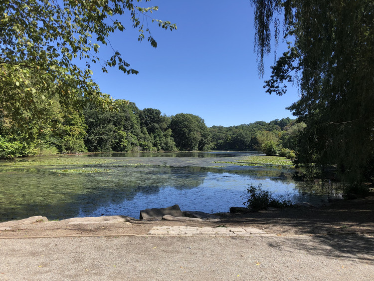 NYC Green Relief and Recovery Fund Announces Support for Parks and Open Spaces, Courtesy of NYC Green Relief and Recovery Fund