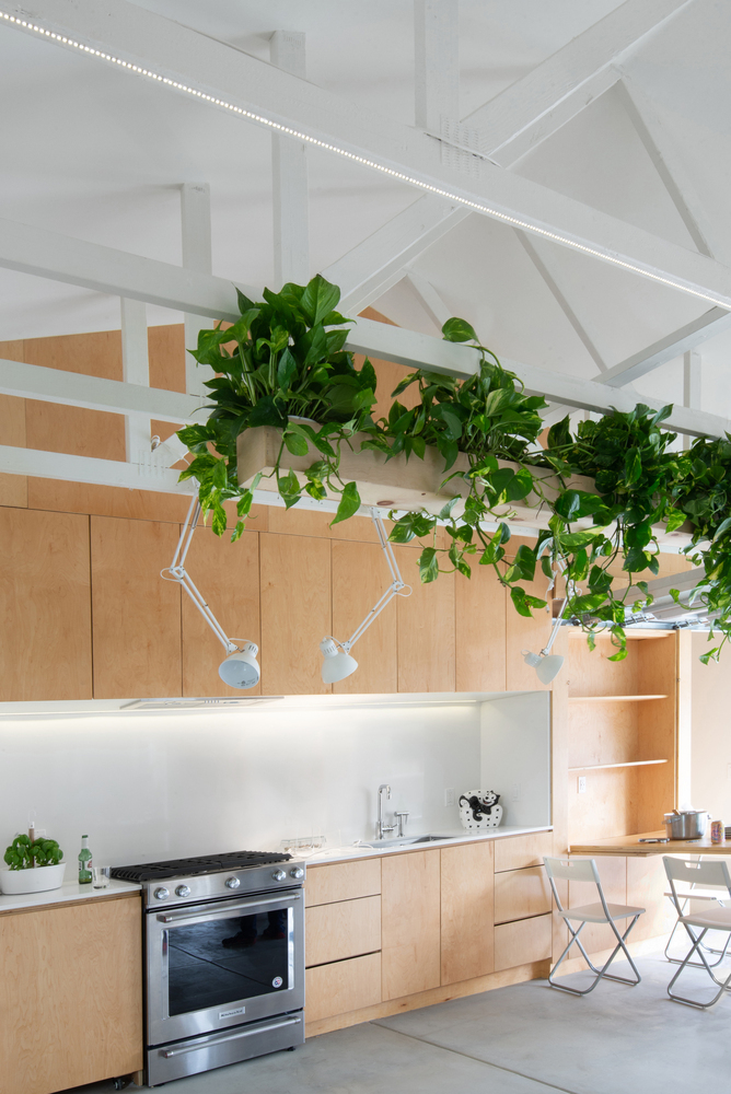 Tendencias en Diseño de Interiores 2020: Biofilia, Chubby y Fluidez,San Diego Garage Conversion / Losada Garcia Architects + Prismatica + ModernGrannyFlat © Rachel Pangi
