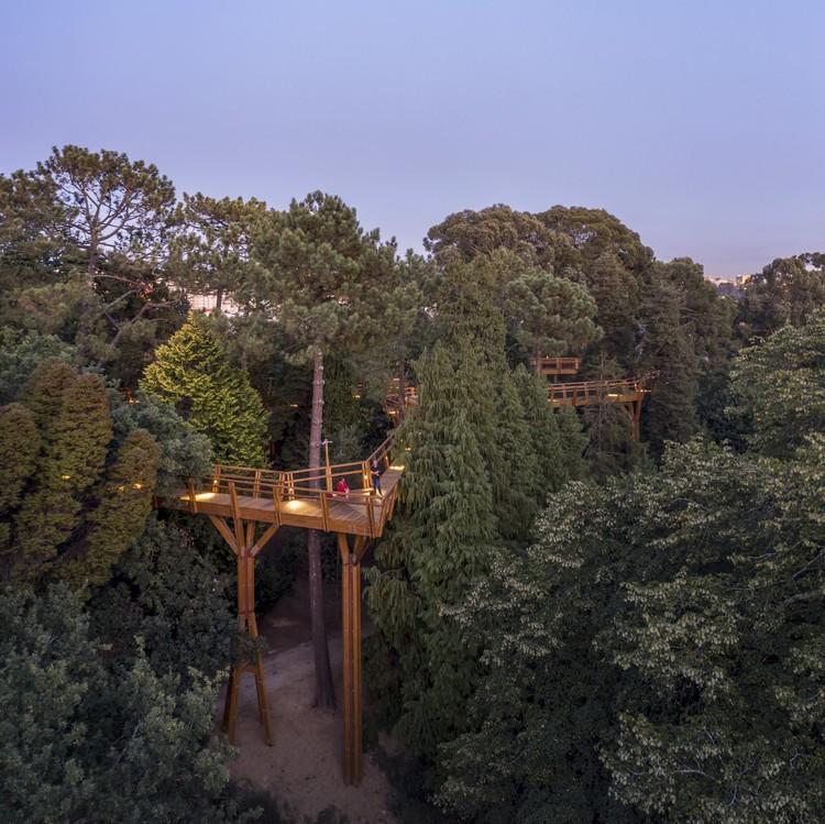 Treetop Walk / Carlos Castanheira, © Fernando Guerra | FG+SG