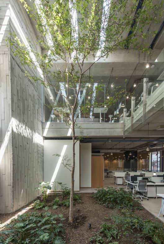Corporativo Anteus Constructora / Ricardo Yslas Gámez Arquitectos    ArchDaily México