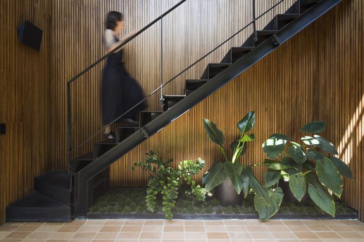12 Plantas para cultivar em ambientes internos, Apartamento FLO / Marina Portolano Arquitetura + Flavia Torres Arquitetura. Imagem: © Maíra Acayaba