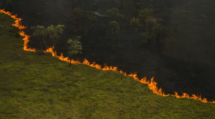 10 Podcasts sobre temas ambientais no Brasil, Pantanal em chamas, 2020. Foto © João Farkas
