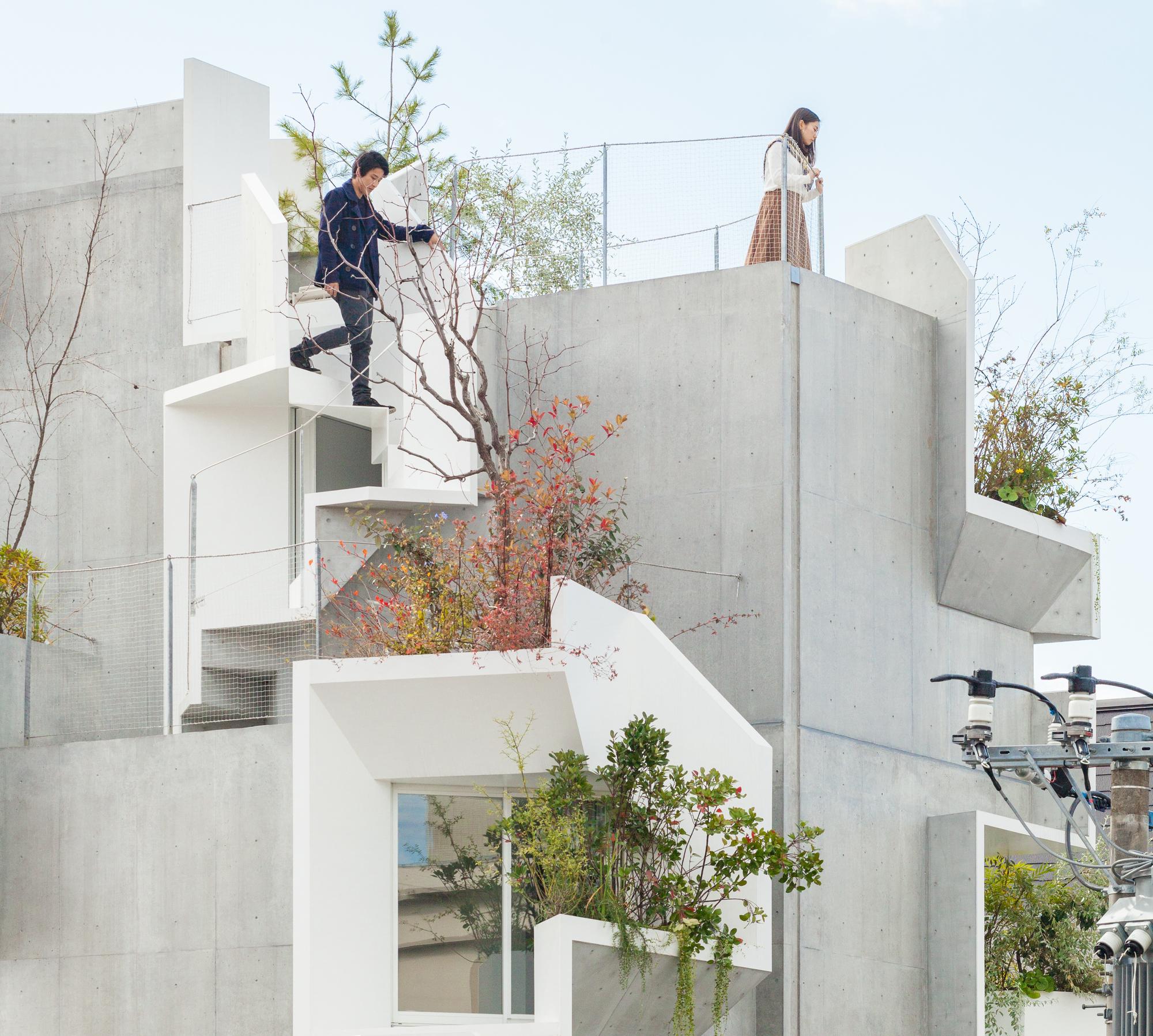 Tree Ness House Akihisa Hirata Archdaily