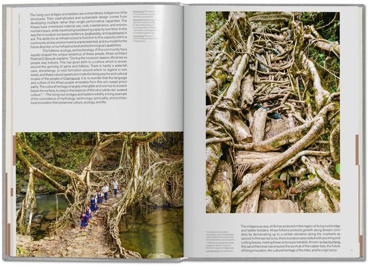 Puentes de raíces vivientes - Pueblo Khasis (India). Image Cortesía de Julia Watson