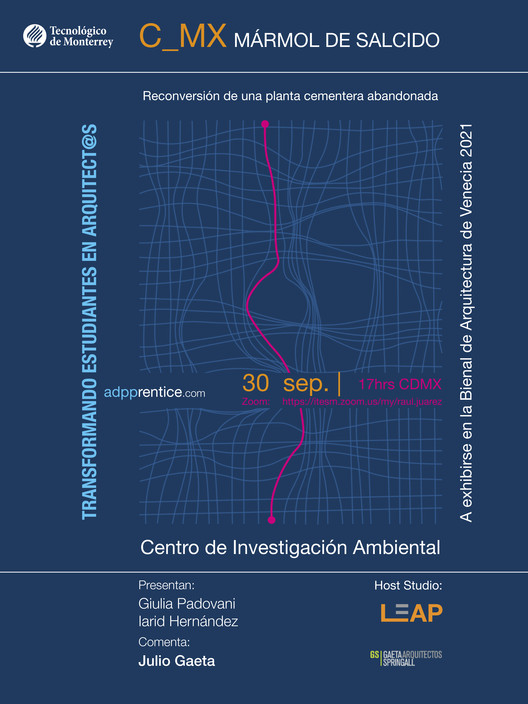 Resultados del Taller AADP de Adpprentice - Comentarios de Julio Gaeta, Adpprentice