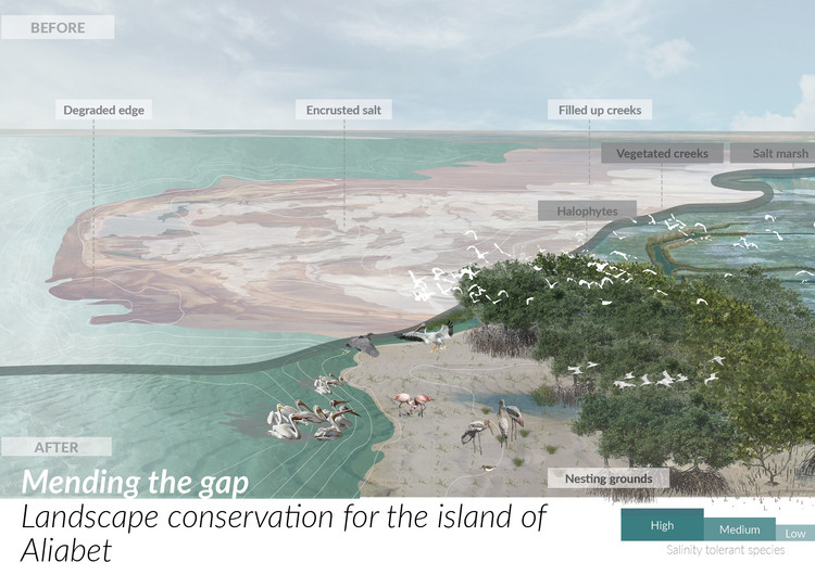 Mending the gap: Landscape conservation for the island of Aliabet / Shreeni Benjamin. Image Courtesy of YTAA
