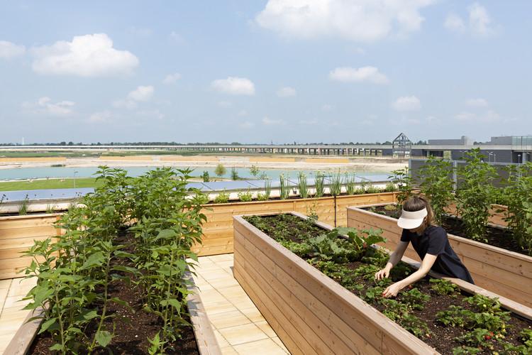 Dia Mundial da Alimentação: arquitetura e a promoção da segurança alimentar, Imagem © Paul Sebesta