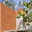 03 - The Box House: Ngôi nhà với những mảng xanh đồng bộ với thiên nhiên