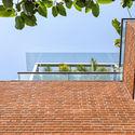 06 - The Box House: Ngôi nhà với những mảng xanh đồng bộ với thiên nhiên