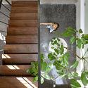 15 - The Box House: Ngôi nhà với những mảng xanh đồng bộ với thiên nhiên