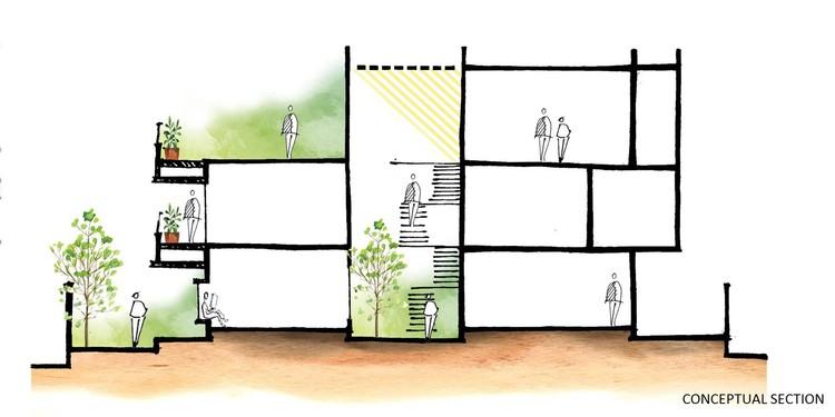 CONCEPTUAL SECTION - The Box House: Ngôi nhà với những mảng xanh đồng bộ với thiên nhiên