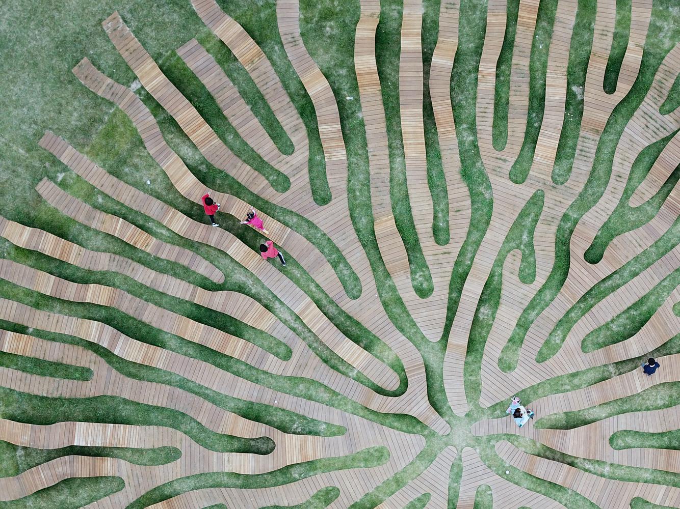 Deck de madera en espacios públicos: Suelos nobles para el encuentro colectivo,Root Bench / Yong Ju Lee Architecture. Image © Yong Ju Lee Architecture