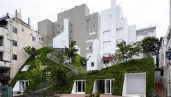Hotel SHIROIYA / Sou Fujimoto Architects