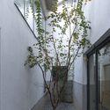atrium. Image © Kunpeng Liu