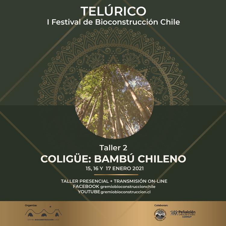 Curso de Diseño y Construcción con Coligüe, Bambú Chileno, Comisión Festival, Gremio Bioconstrucción Chile