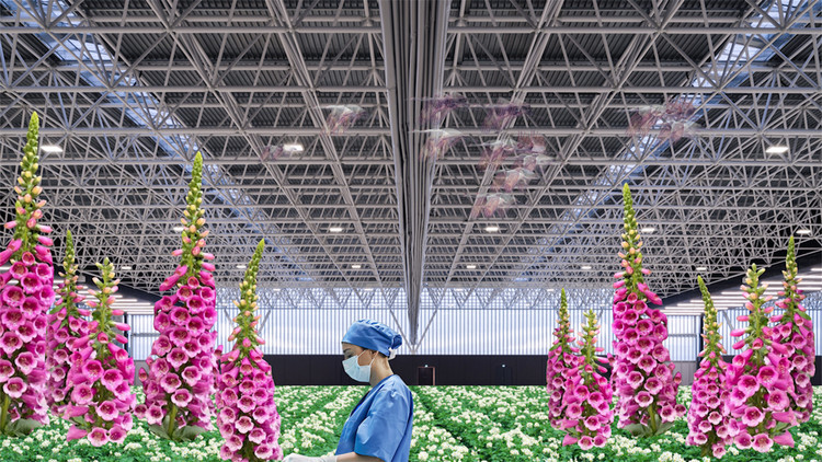 La nueva película de OMA explora el hospital del futuro, © OMA